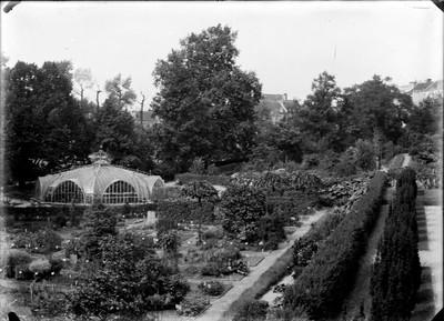Jardin botanique de Bruxelles : Serre Victoria et école éthologique #0024