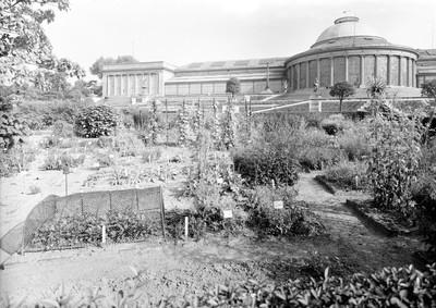 Jardin botanique de Bruxelles : Ecole de botanique et bâtiment principal #0009