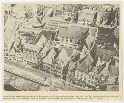 Het Collegium Trilingue en de Busleydengang in Leuven