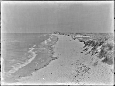 Plage et dunes, à marée basse, à Knocke #2241