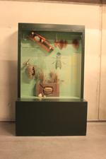 Mobiele museumkast: staaltjes van bouwkunst.