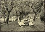 Provinciale Vroedvrouwenschool HASSELT Hof.
