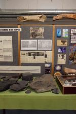 Afbeeldingen en teksten over het carboonwoud