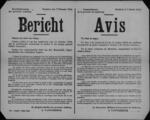 Hasselt, affiche van 7 februari 1919 - achtergebleven materialen en voorraden van het Duitse leger behoren toe aan de geallieerden.