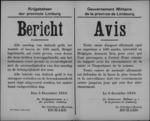 Hasselt, affiche van 3 december 1918 - beloning bij hulp inbeslagname Duits geld en verbod op invoer.
