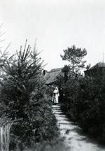 Foto: straatversiering: Virga Jesse en de Dolende Man Martelarenlaan (Virga Jessefeesten, Hasselt, 1947)