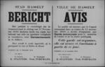 Stad Hasselt, affiche van 15 november 1918 - inrichting gemeentewacht.