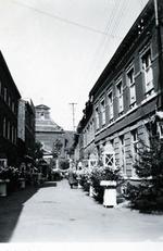 Foto: straatversiering: Schrijnwerkersstraat (Virga Jessefeesten, Hasselt, 1947)