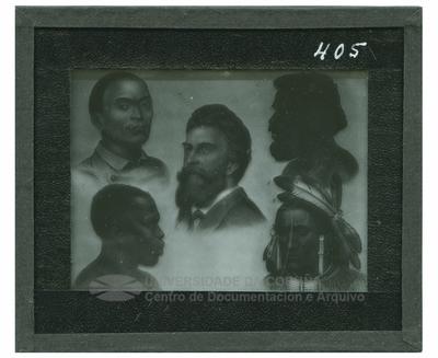 Cinco cabezas de razas