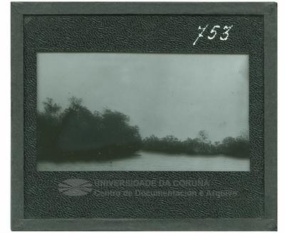 Río tropical