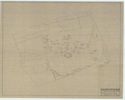 Kadastrale kaart. Kadastrale kaart met namen van gebouwen en kadastrale nummers