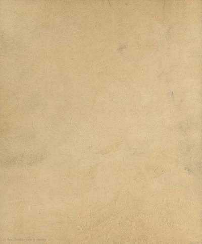 [Evangelia] [Manuscrito]