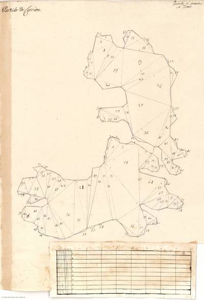 Planes que han servido para averiguar la superficie de las Provincias de España, y de sus Islas adyacentes Partido de Carrión [Material cartográfico]