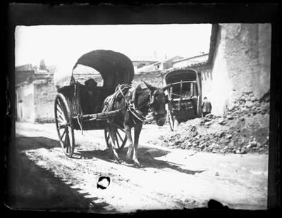 Carro tirado por mula