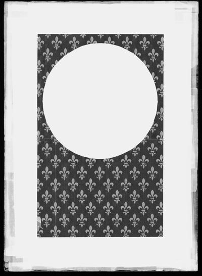 Placa para efectos especiales con flor de lis