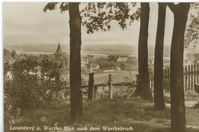 Landsberg a. Warthe. Blick nach dem Warthebruch.