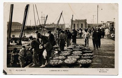 Llegada de la pesca [Material gráfico]: Alicante