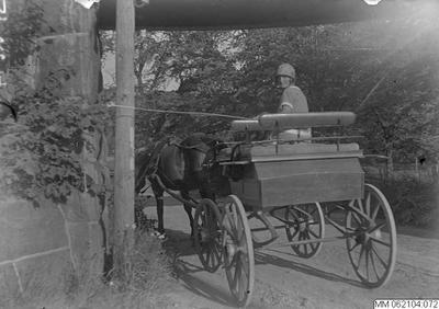 häst, hästvagnar, kvinna, hästar, hästvagn, vagnar, vagn, kvinnor