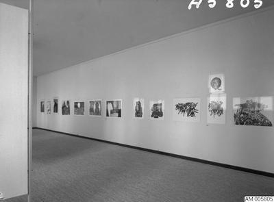 målningar, museum, tavla, tavlor, grafik, 1966, interiörbilder, 1960-talet, utställningar, modern amerikansk grafik, utställning, målning, museer, iamerikansk grafik, nteriörbild, malmö museum