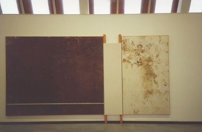 Hermann Nitsch; Relitto di 62. aktion trieste 1978