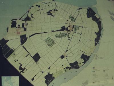 Oostelijk Flevoland. Reliëfkaart beplantingen.