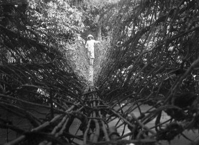 hängbro, tropikklädd, man, flod, fotografi, photograph@eng
