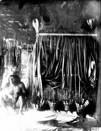 Liten hydda i vilka de sjuka ligga, när Medicinmannen Selimo hotar med sång och besvärjelser. Under kronorna an balsaträ stå skålar med majsöl och majsgröt. Selimo bär själv en dylik krona. Erh: från Erland Nordenskiöld 1928. Nordenskiöld: Indianerna på Panamanäset. Stockholm 1928, bild 32. (katalogkort)
