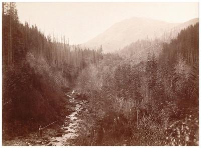 Lazescsinai völgy, Pietrosz havassal