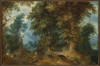 Pejzaż leśny