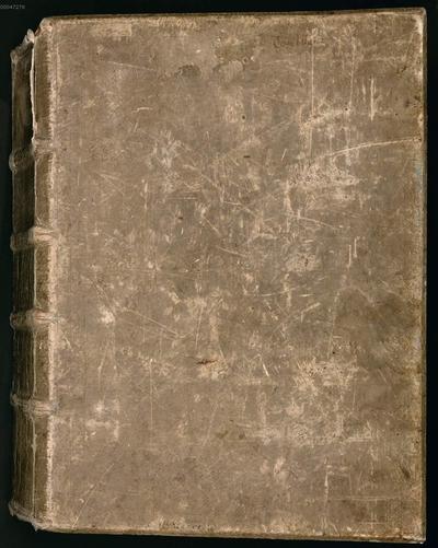 Bibel - BSB Clm 12741