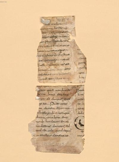In Johannis evangelium tractatus CXXIV - BSB Clm 29382(6