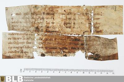 Lectionarius, Fragment - Aug. Fr. 87