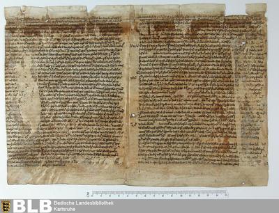 Sermones uel tractatus, Fragment - Aug. Fr. 89