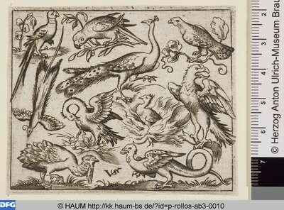 Zehn Vögel, in der Mitte Phönix und Pfau