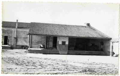 Sindicat agrícola de Terrassa (Barcelona). Molls de descàrrega veremes-olives.