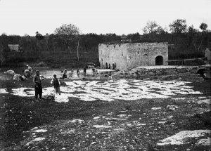 Mühle am Ruwik, südlich Aleppo, Wäschetrocknen