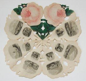 Rose von Helgoland