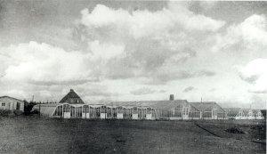 Alte Gärtnerei am Rader Weg, später Gärtnerei Petersen (heute Neubaugebiet)