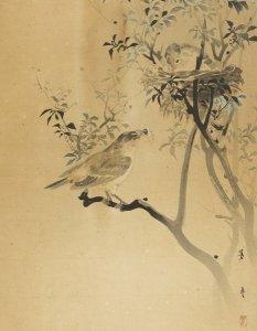 Zwei Vögel am Nest