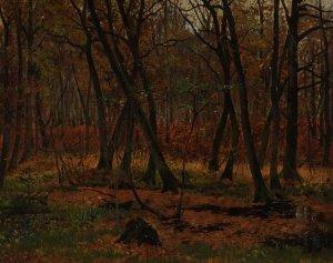 Wald in Schleswig