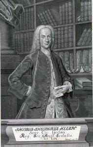 Jacobus Theodorus Klein