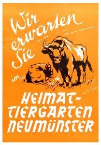 Tierparkplakat mit Wisent