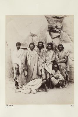 Fotografi. Personer ur Bicharifolket. Egypten.