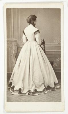 Wilhelmina von Hallwyl Biografi och genealogi
