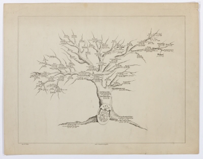 Biografi och genealogi. Stamträd för släkten Uhse från 1742 till 1913.