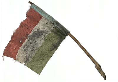 Nemzeti színű zászló