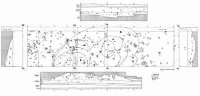 Așezarea neolitică de la Târgu Frumos - Baza Pătule