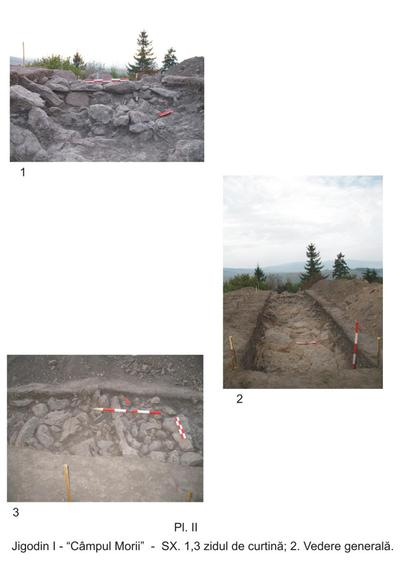 Situl arheologic de la Jigodin-Băi - Câmpul Morii
