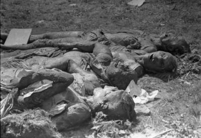 A Budai Chevra Kadisa Maros utcai kórházában 1945. január 12-én elkövetett nyilas tömeggyilkosság áldozatainak exhumálása a kórház udvarán. Kihantolt holttestek, a leghátsó holttest lábánál az azonosító felirat: Feldmann Magda, 1923. április 5.