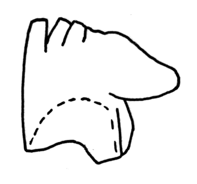 Holodontus ordovicicus (Bergström, 1961)